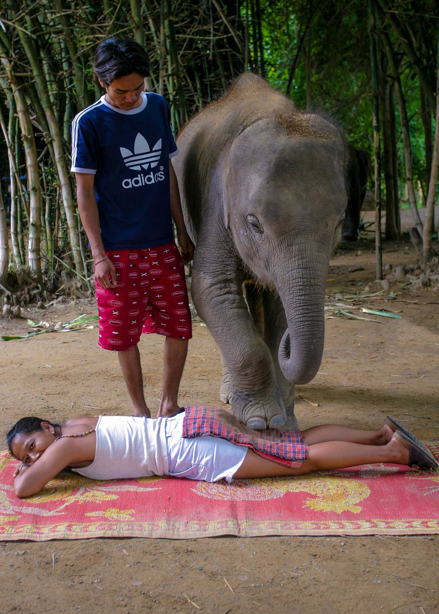 Deep tissue massage is being performed on Maya, a massage therapist at Massage Fort Myers, by an elephant